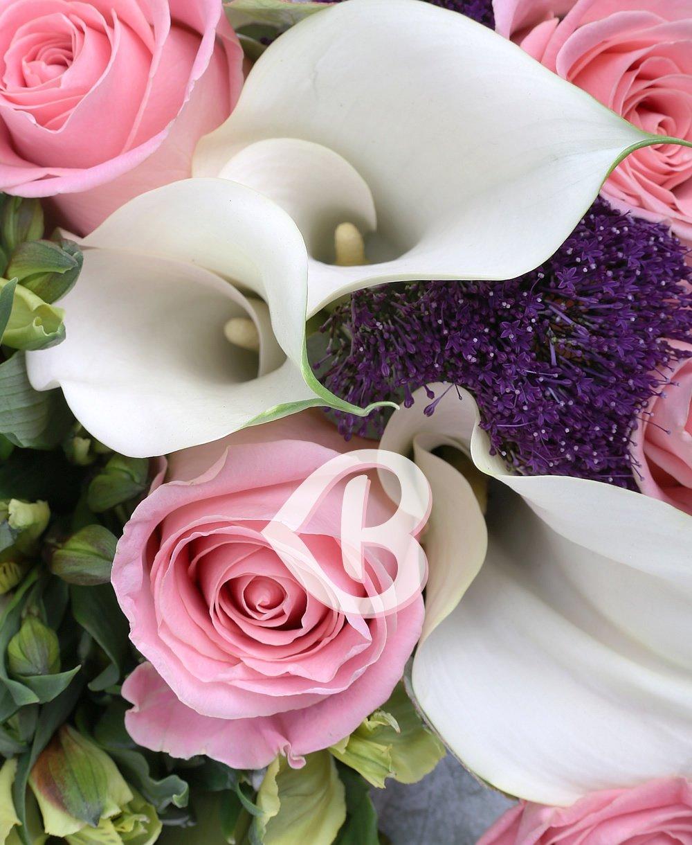 Imaginea produsului Gloria Florilor
