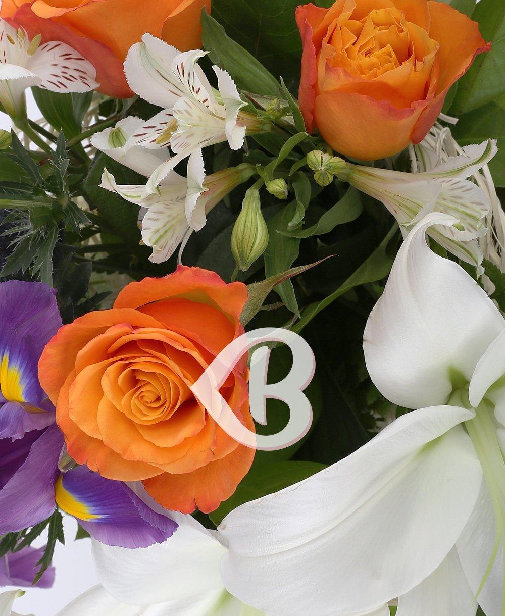 Imaginea produsului Sinceritate Decorată