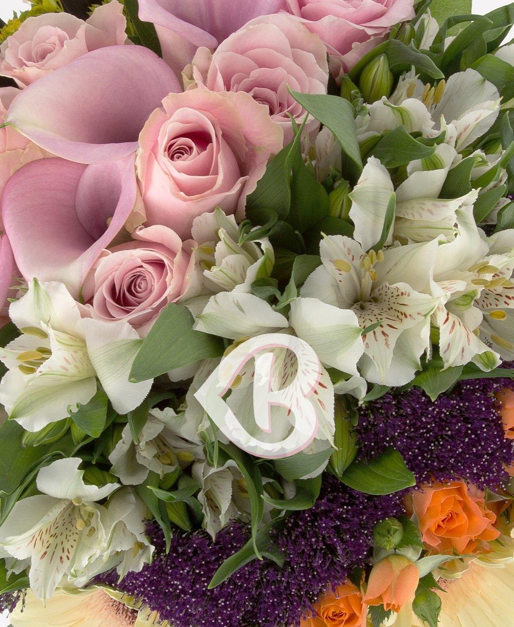 Imaginea produsului petale in versuri