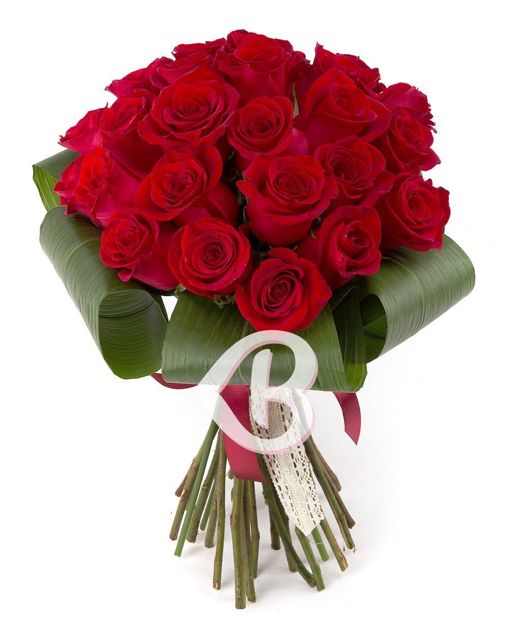 Imaginea produsului 25 Trandafiri Compacți Roșii