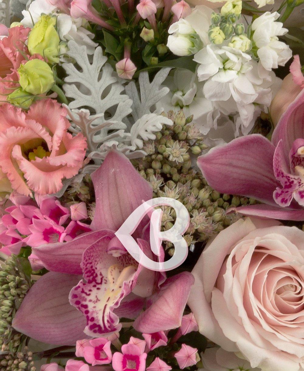 Imaginea produsului Avalanșă Roz