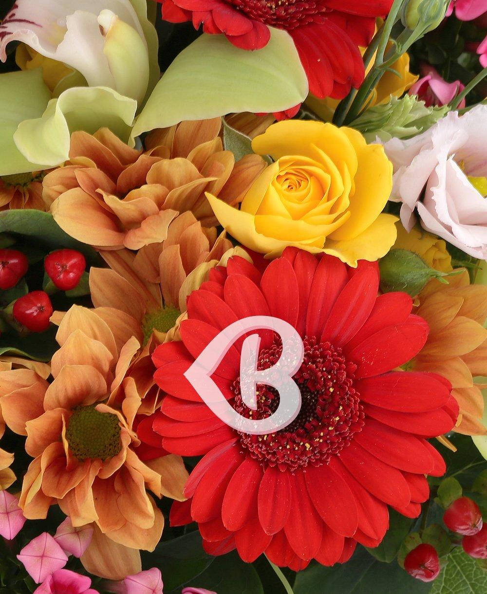 Imaginea produsului Flori De Poveste