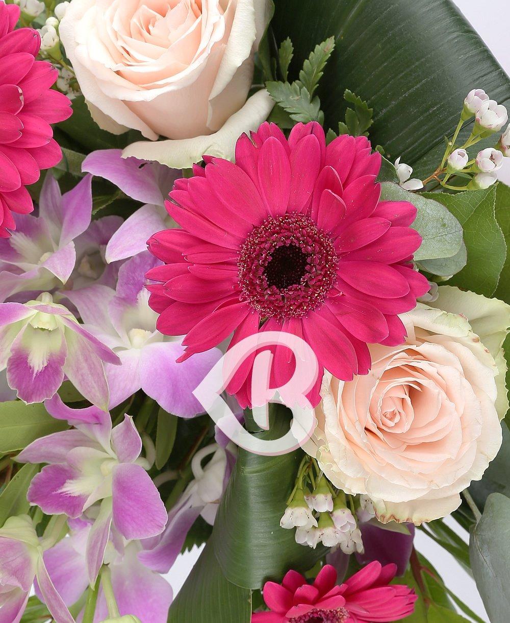 Imaginea produsului Graţia Florilor