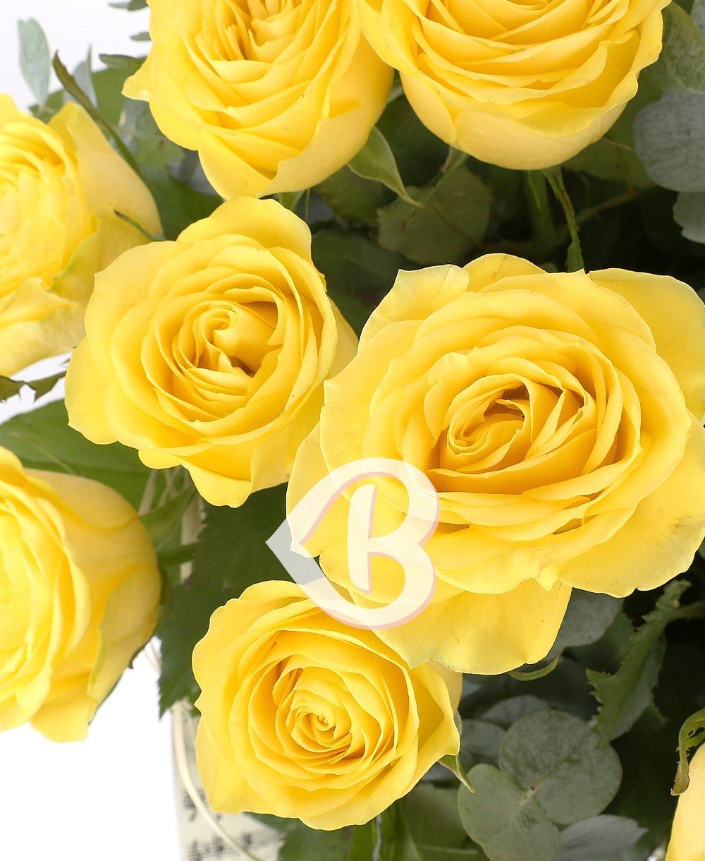 Imaginea produsului 19 Trandafiri Galbeni
