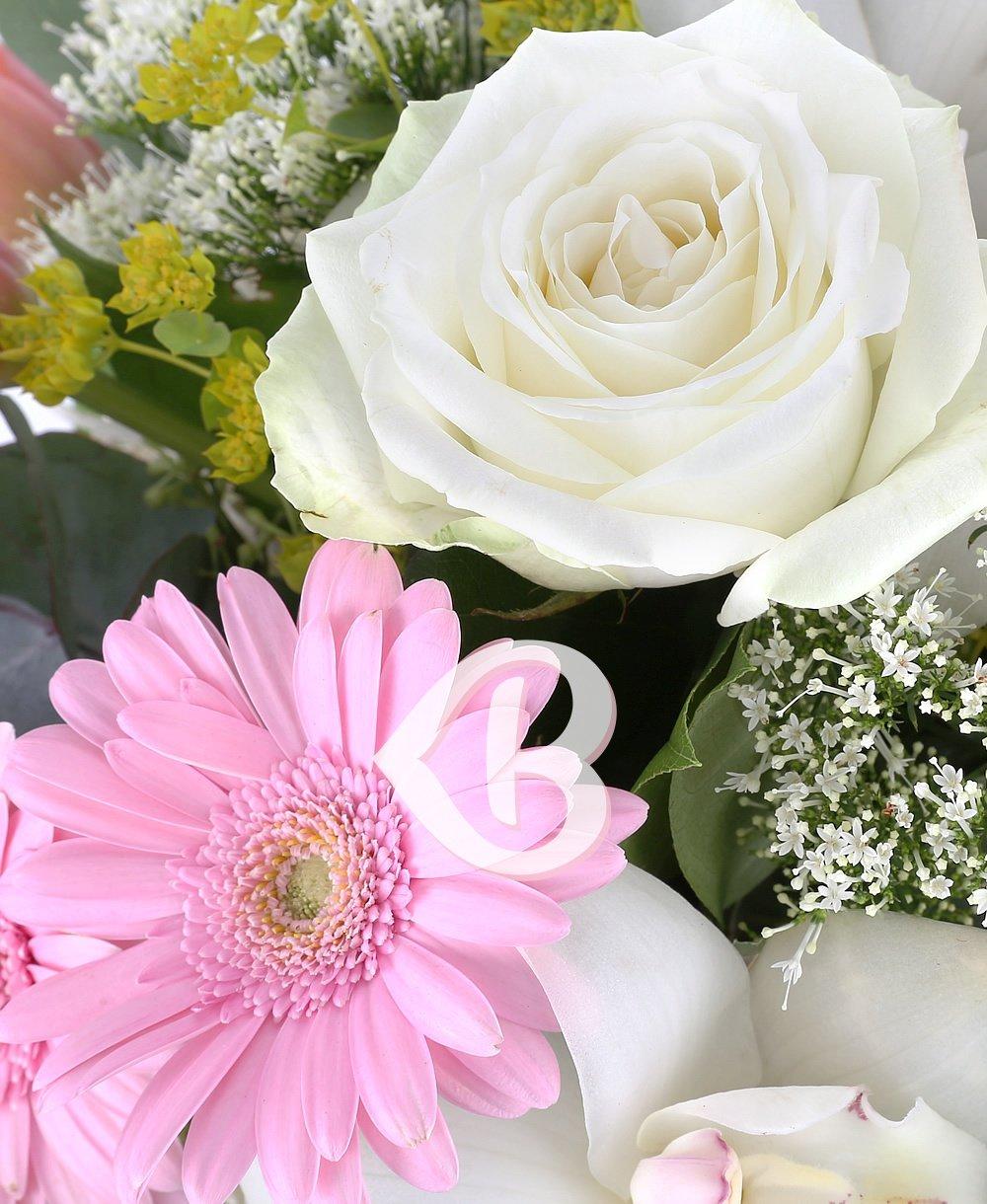 Imaginea produsului Parfum Delicat