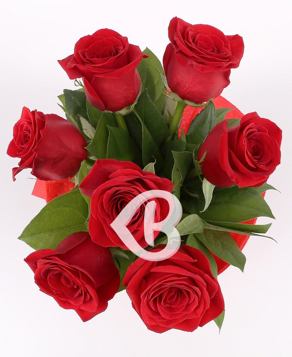 Imaginea produsului 7 Trandafiri roșii