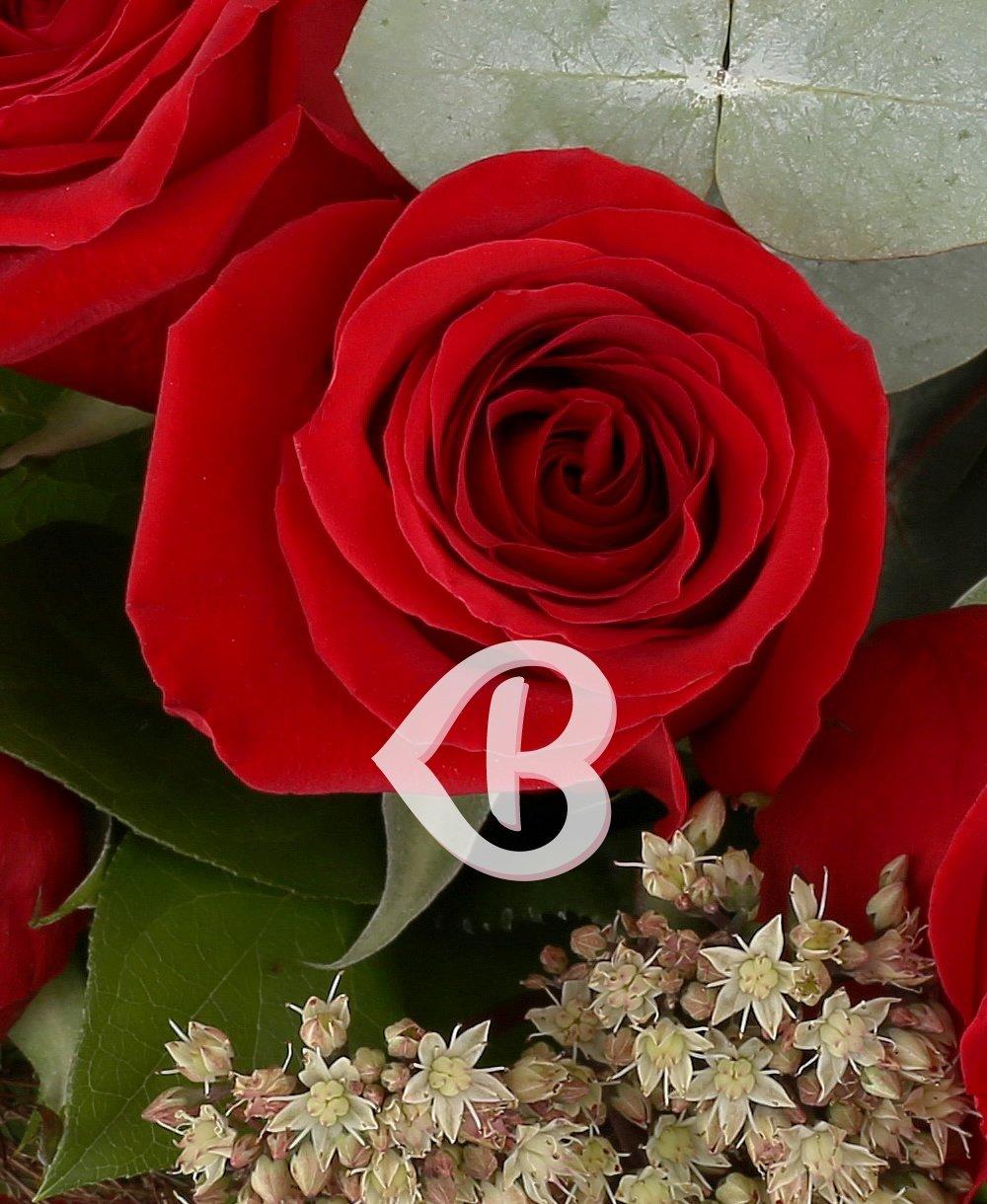 Imaginea produsului 7 Trandafiri roșii ornați
