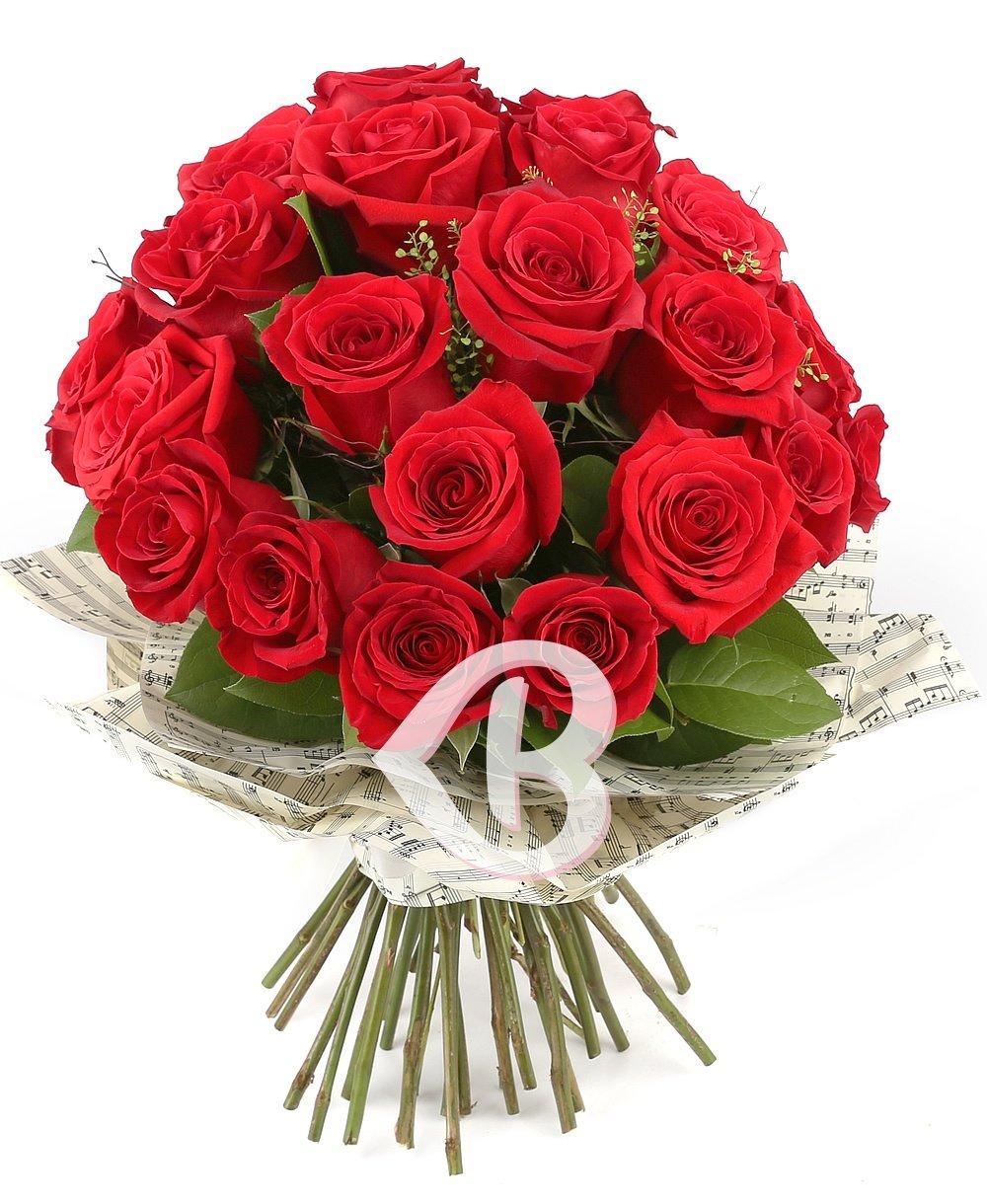 25 Trandafiri minunați roșii