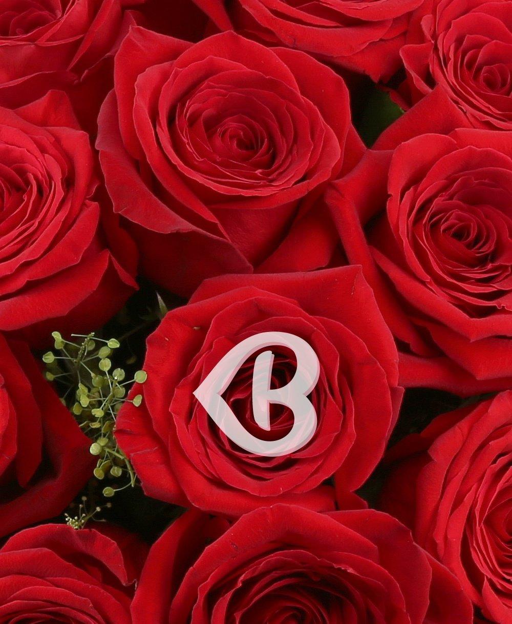 Imaginea produsului 33 Trandafiri Roșii