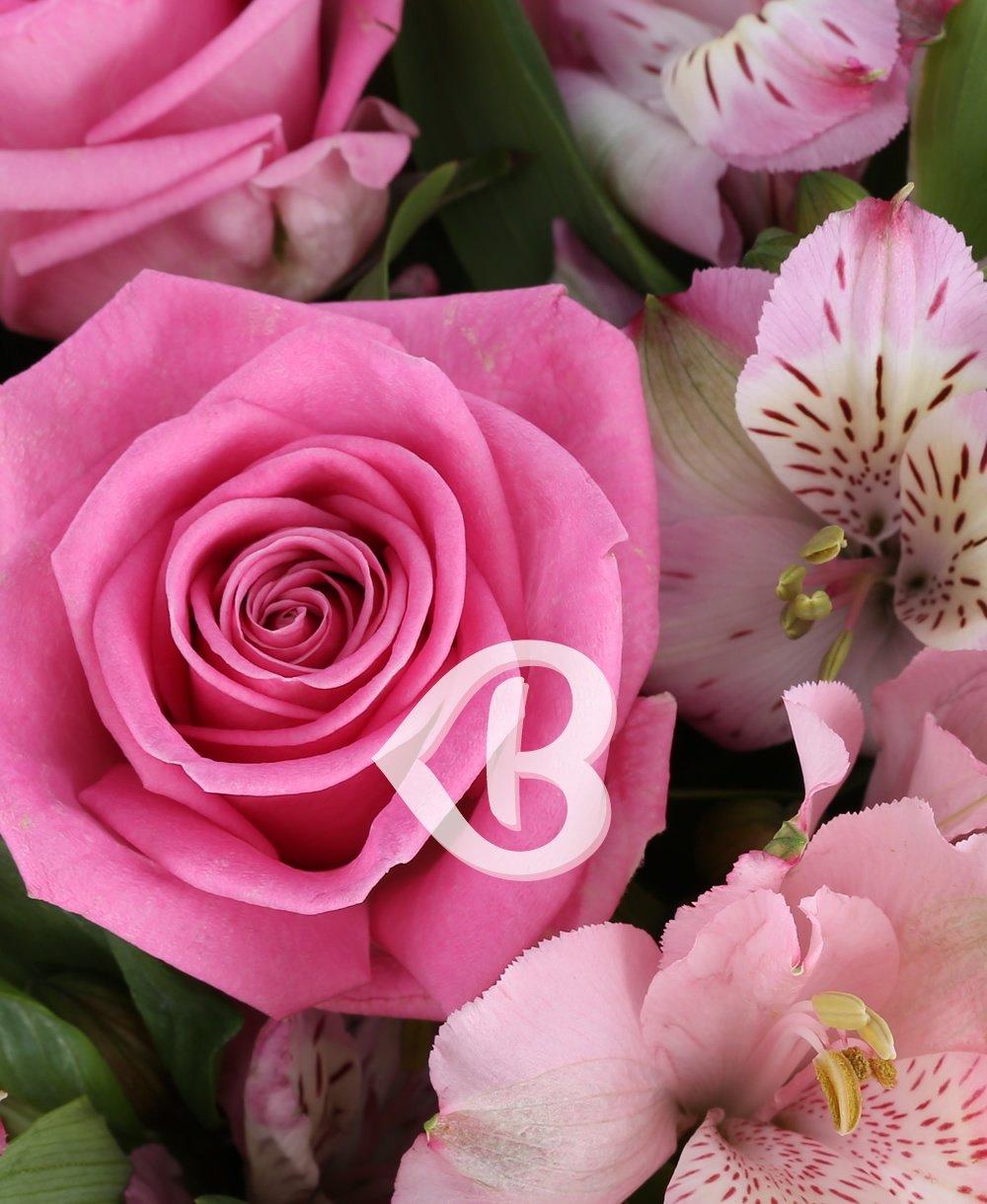 Imaginea produsului Vis romantic