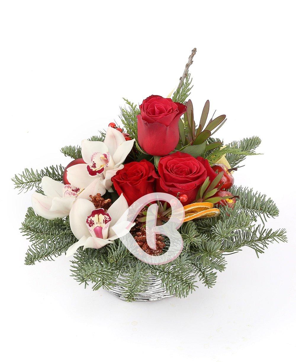 Imaginea produsului Culorile Crăciunului