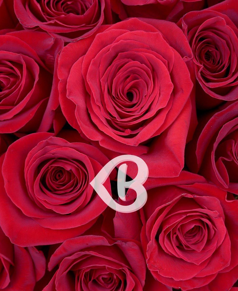 Imaginea produsului 57 Trandafiri Roșii în Cutie