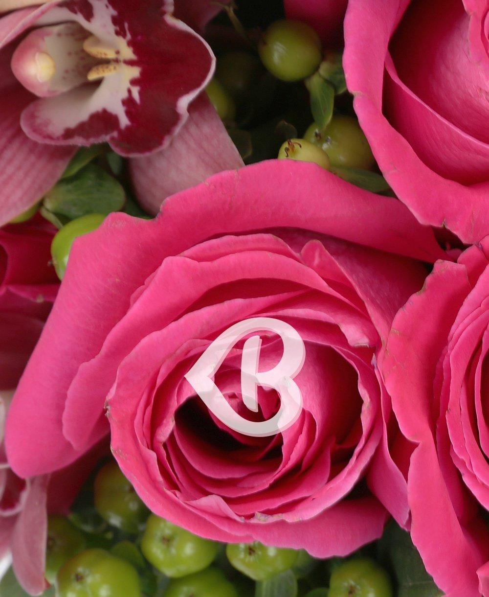 Imaginea produsului Speranțe Roz