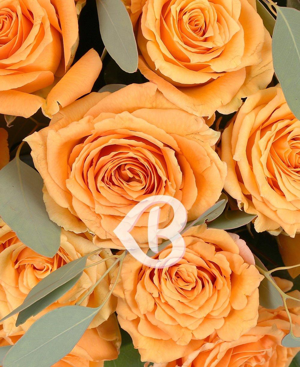 Imaginea produsului 31 Trandafiri Portocalii în Cutie