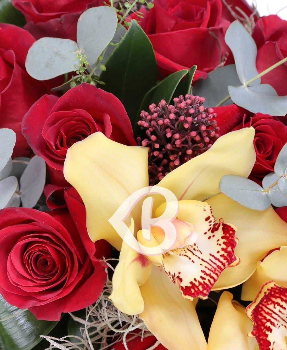 Imaginea produsului Pasiune și Romanță