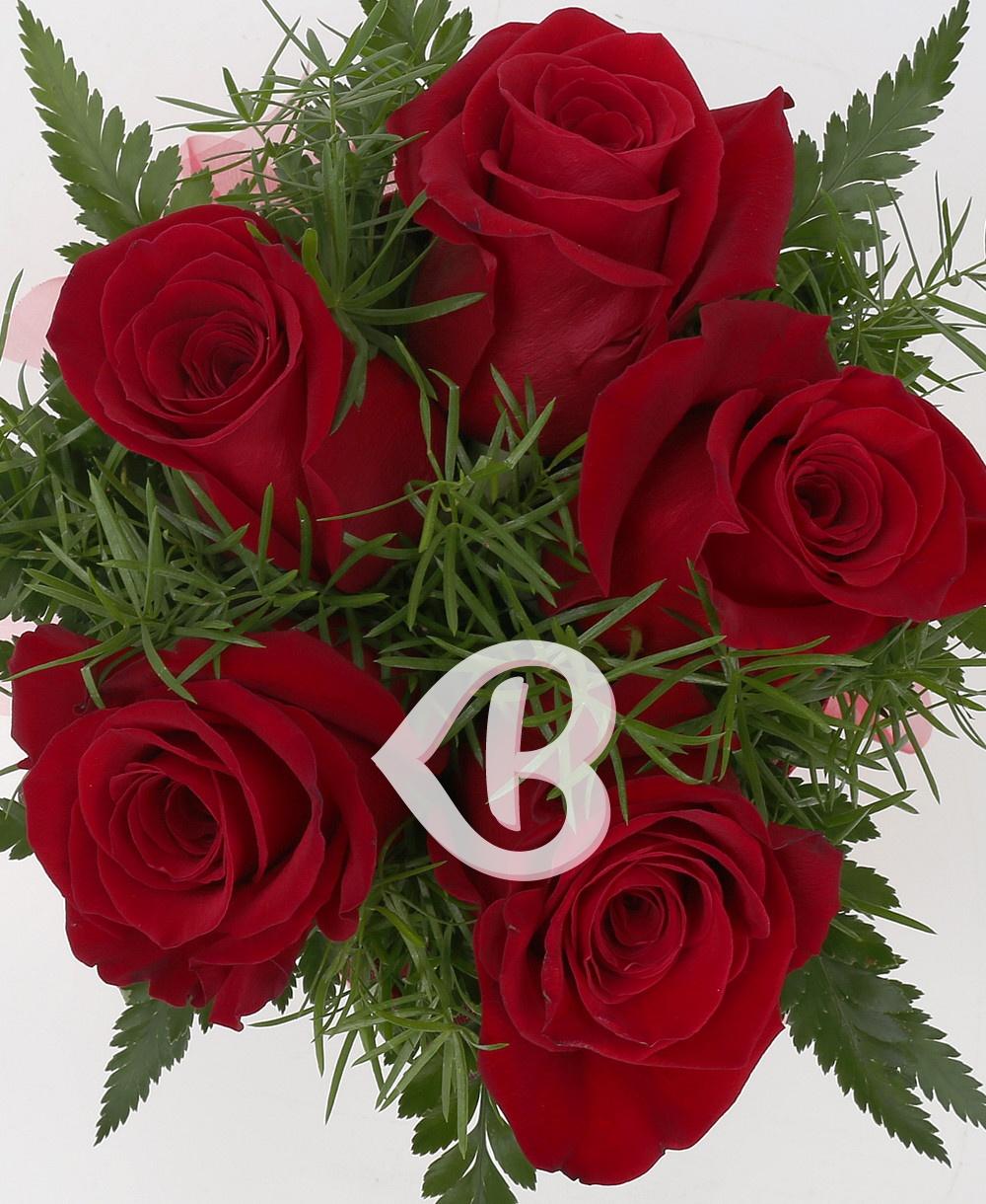 Imaginea produsului Pasiunea Trandafirilor
