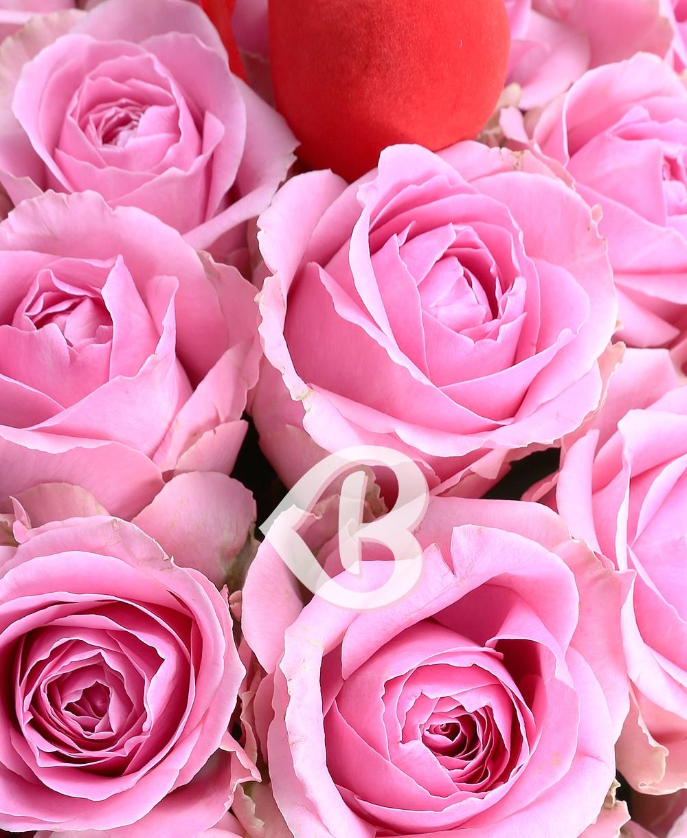 Imaginea produsului 51 Trandafiri Romantici