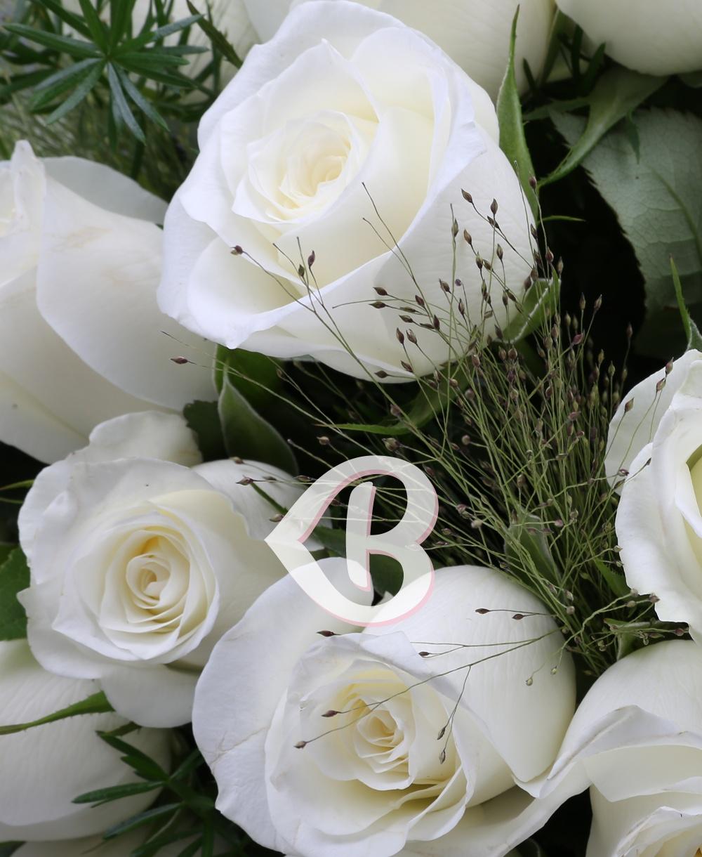Imaginea produsului 51 Trandafiri Albi