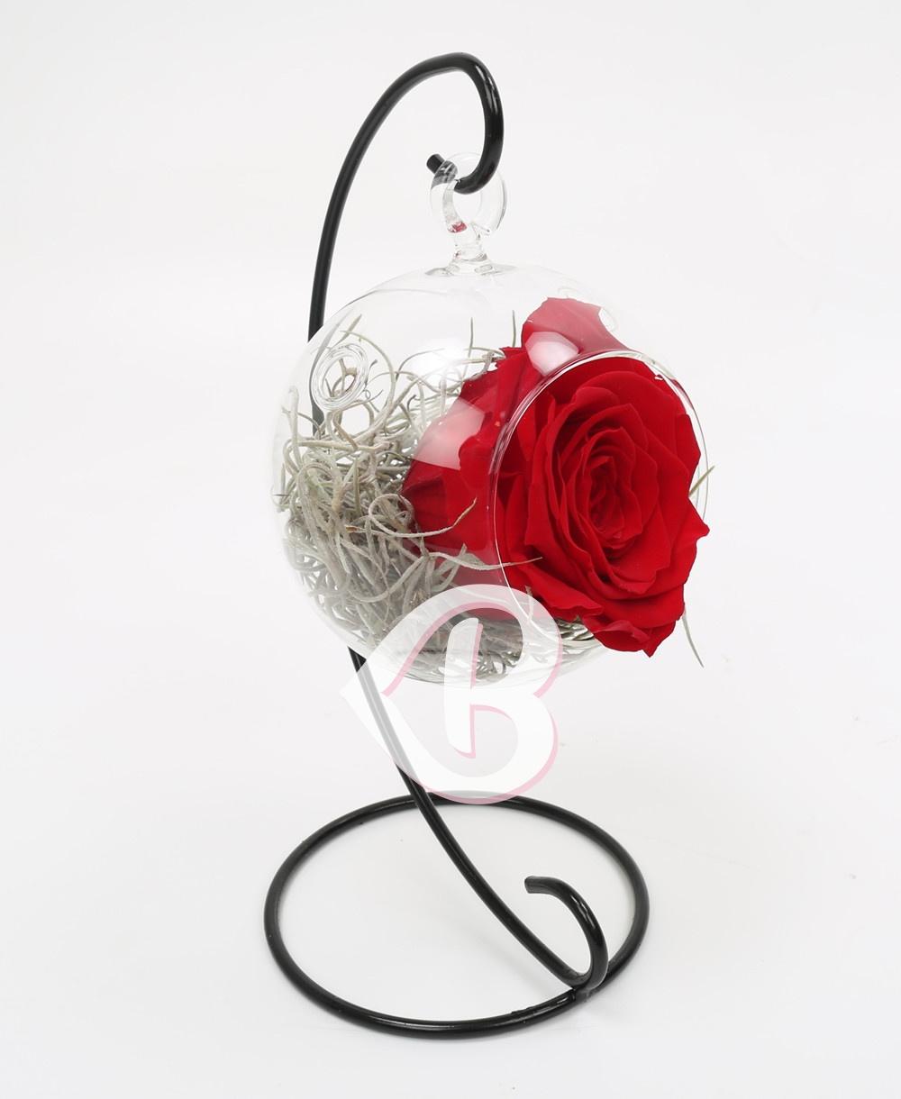 Imaginea produsului Trandafir Roșu Criogenat în Glob