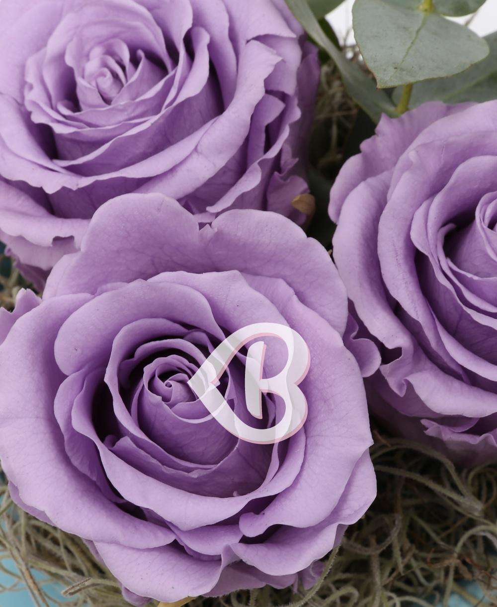 Imaginea produsului Vas Trei Trandafiri Criogenați Mov