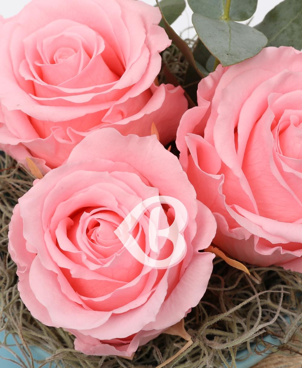 Imaginea produsului Vas Trei Trandafiri Criogenați Roz