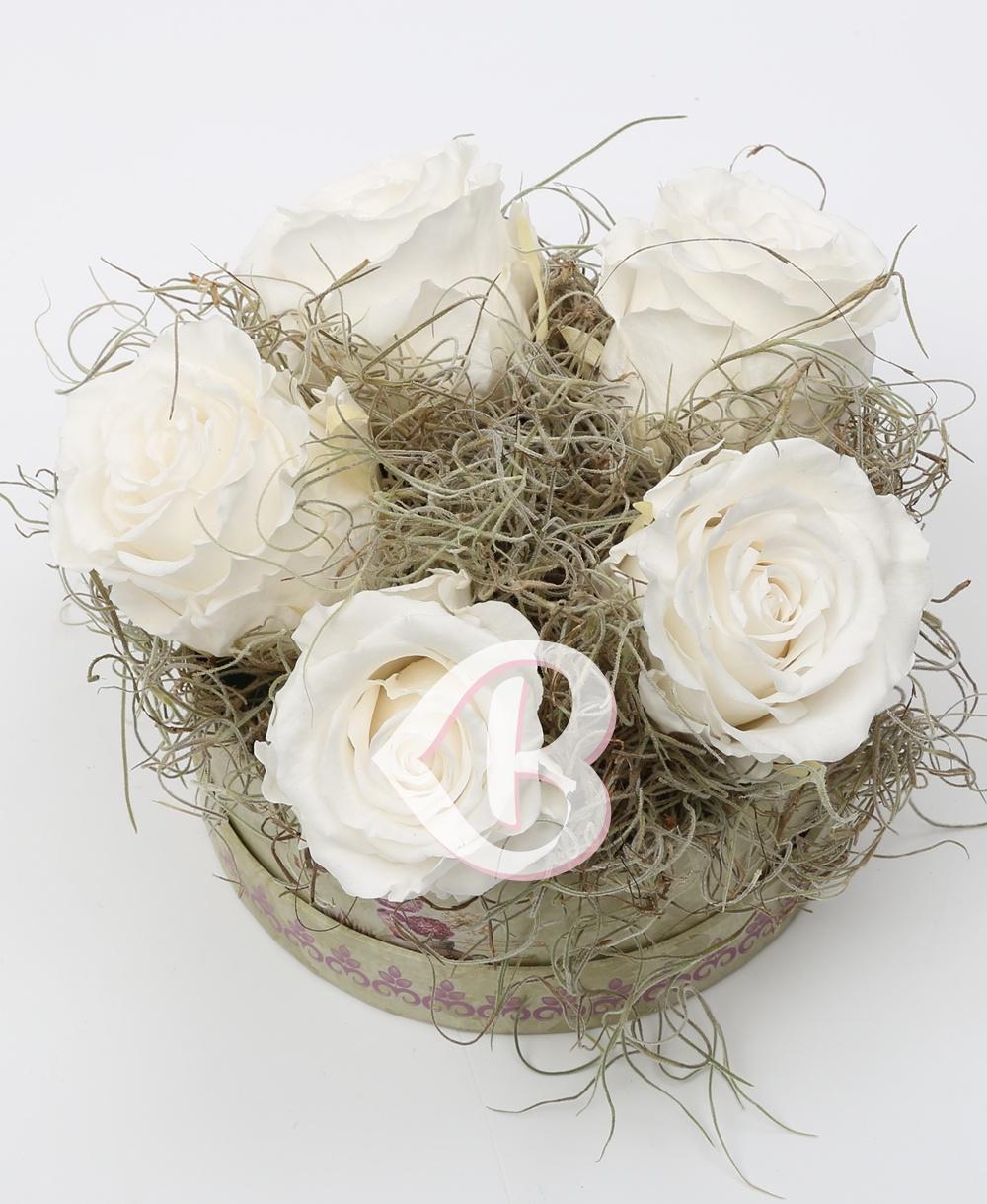 Imaginea produsului Cutie 5 Trandafiri Criogenați Albi