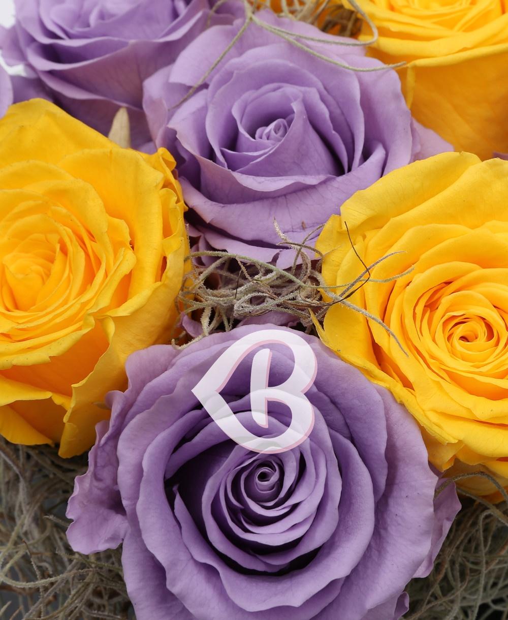 Imaginea produsului Mix Trandafiri Criogenați