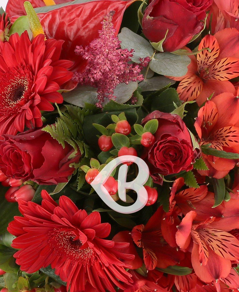 Vibraţia florilor