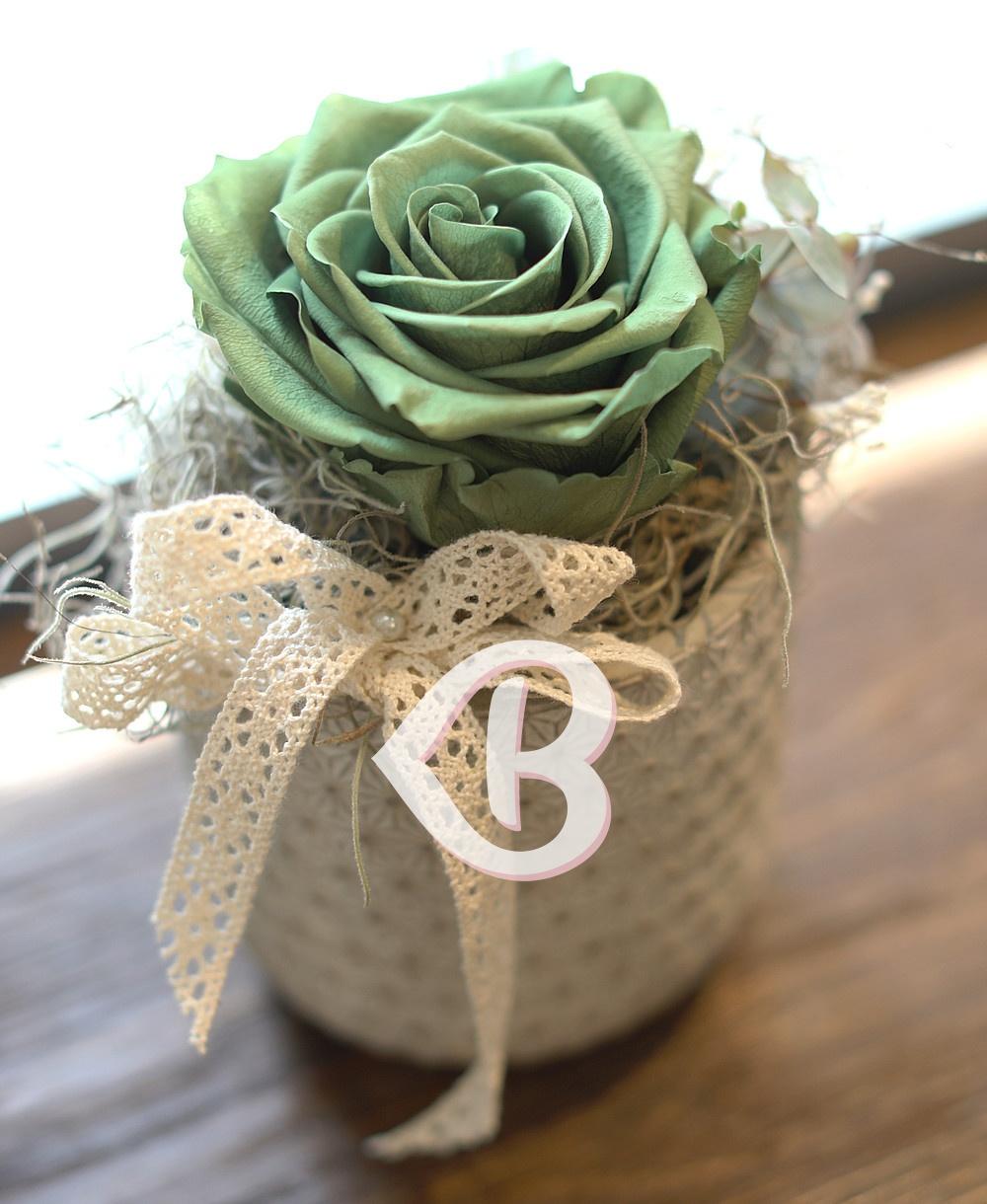 Imaginea produsului Trandafir Criogenat Verde