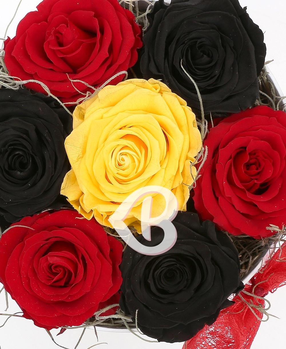 Imaginea produsului Cutie Cu 7 Trandafiri Criogenați în Trei Culori