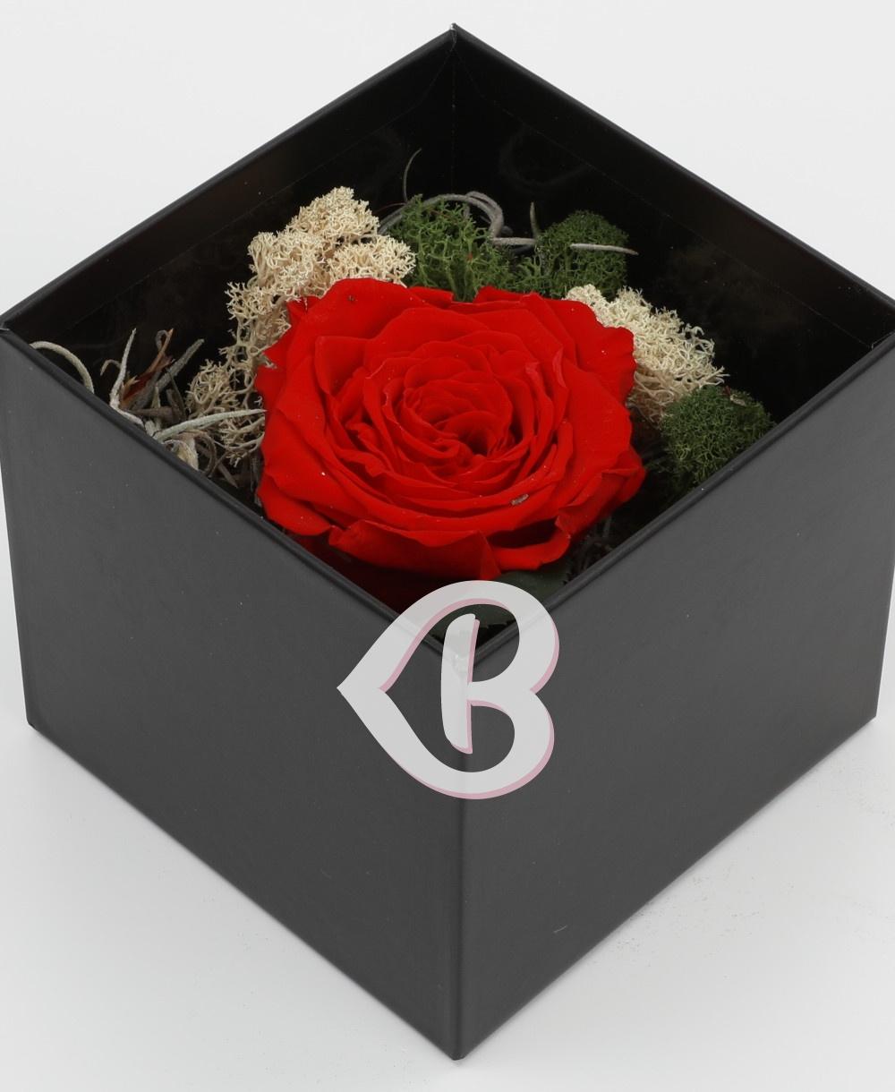 Imaginea produsului Trio Valentine Day