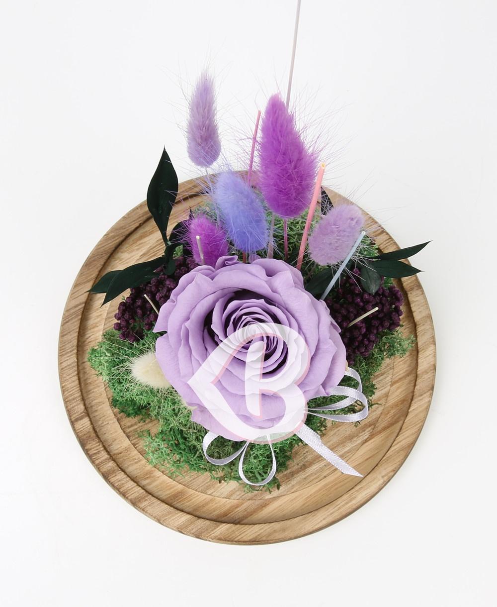 Imaginea produsului Trandafir Violet în Cupolă