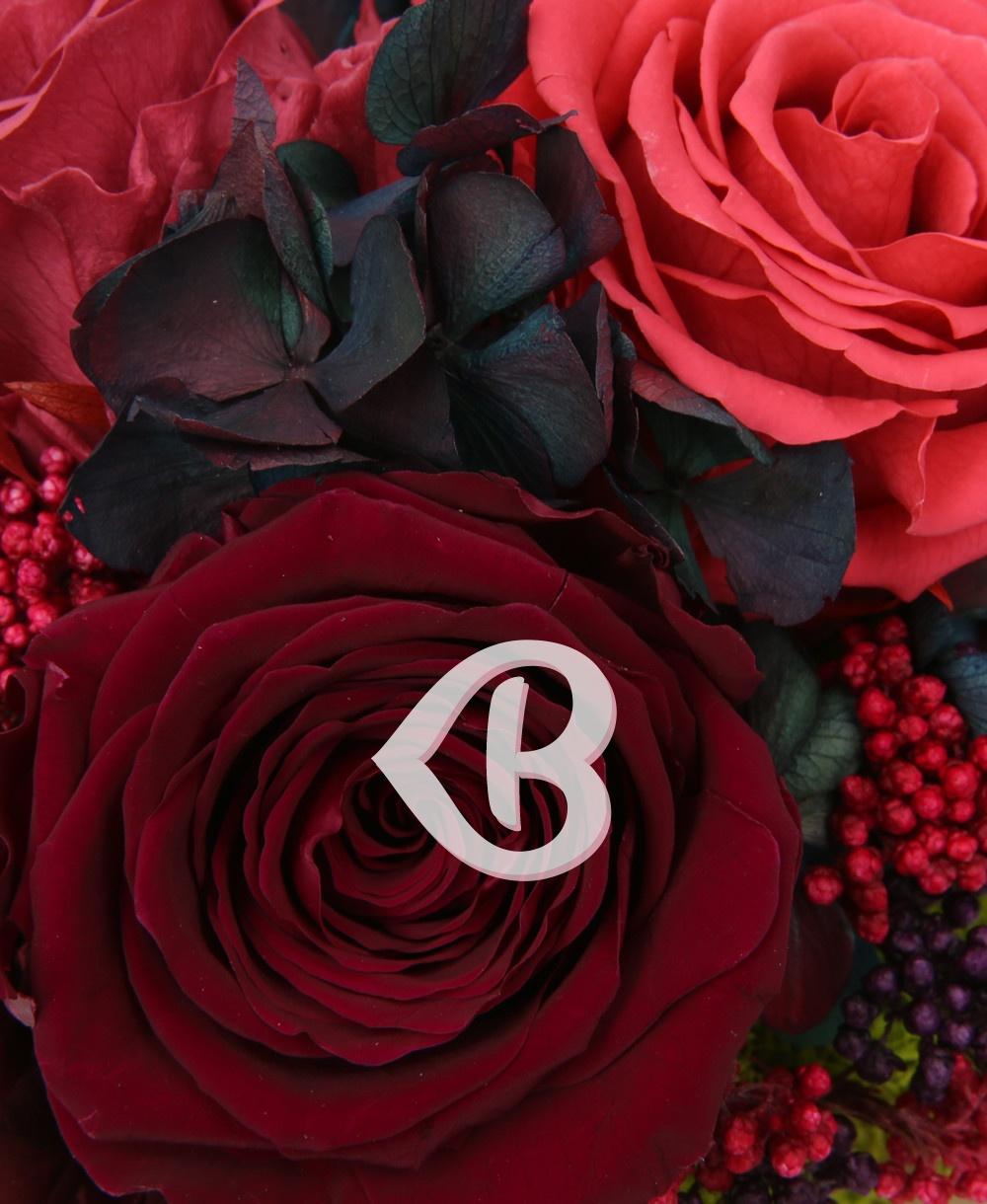 Imaginea produsului Cupola Rozelor