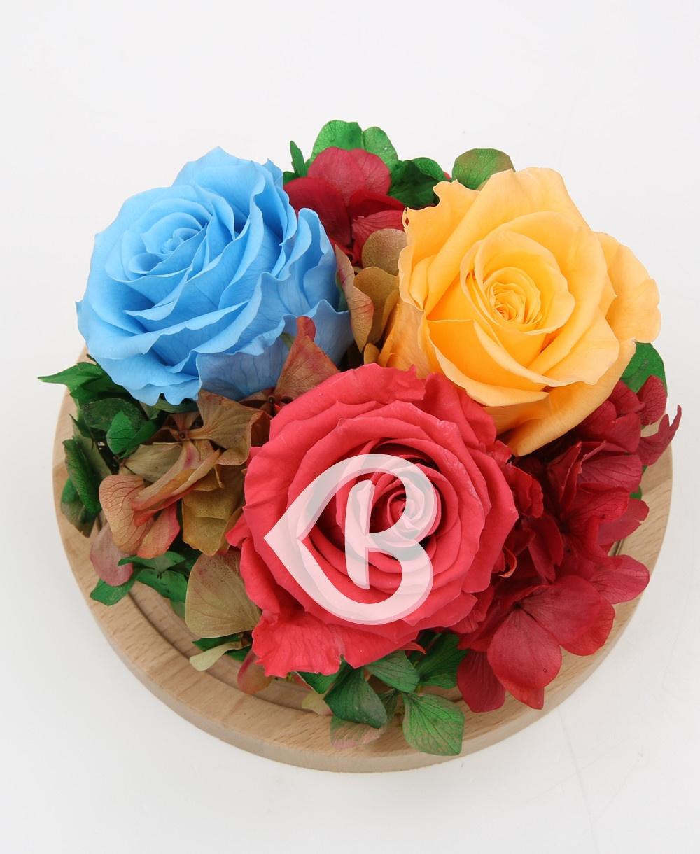 Imaginea produsului Cupola Pastelurilor