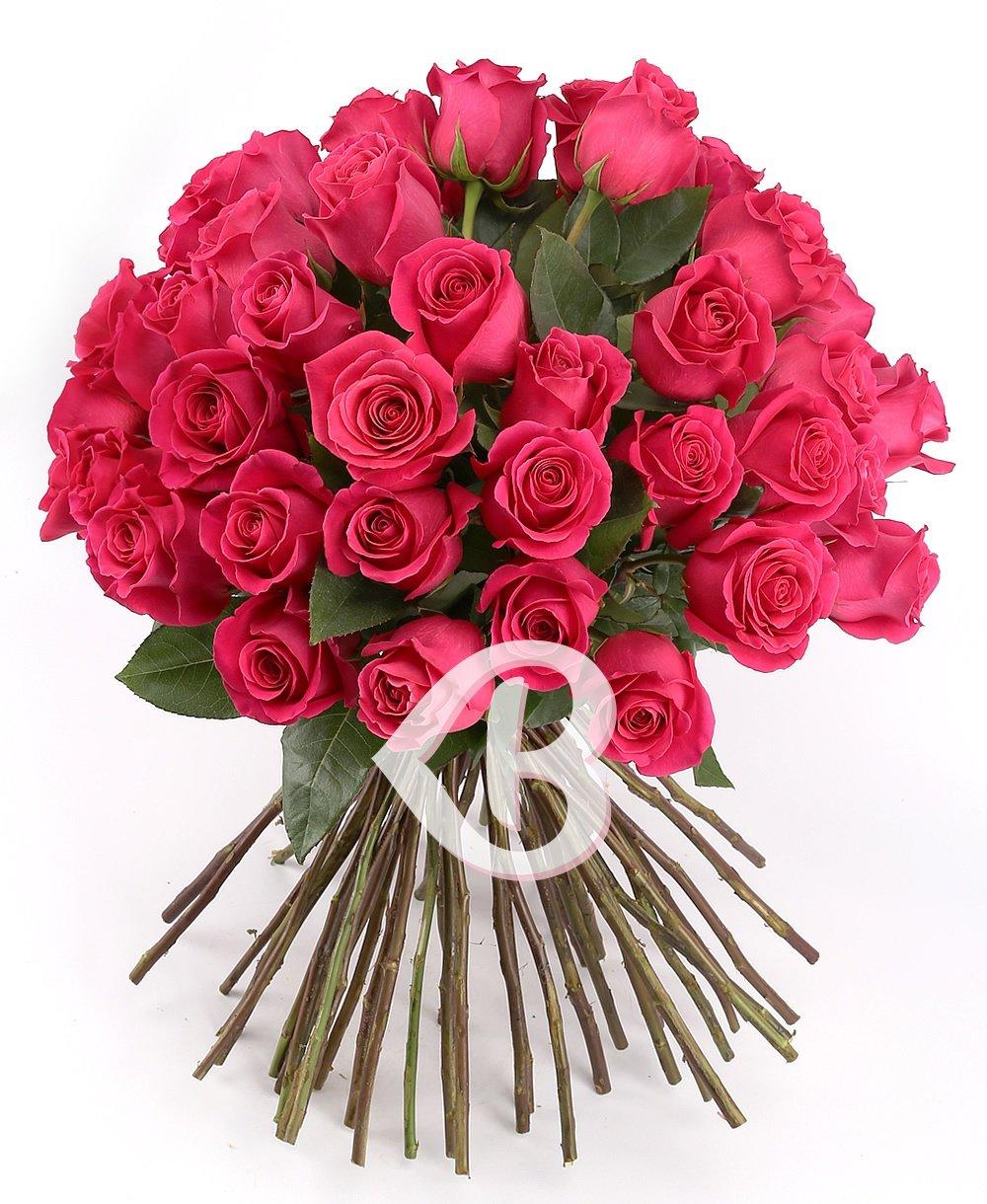 Imaginea produsului 57 De Trandafiri