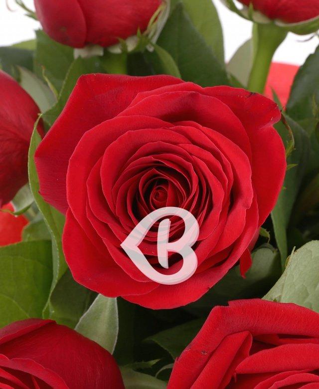 9 Trandafiri roşii