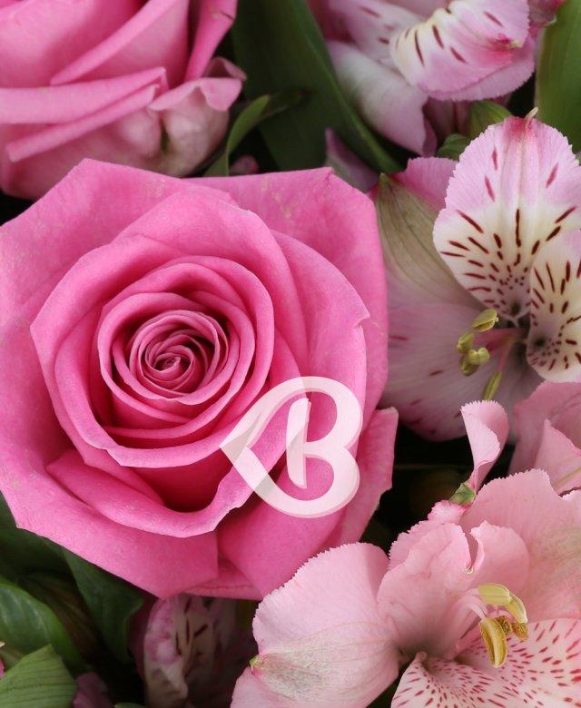 Buchete De Flori Roz Pret De La 120lei